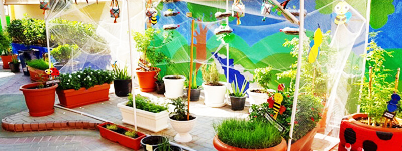 Sensory garden at nursery preschool in Dubai and Abu Dhabi - more plants