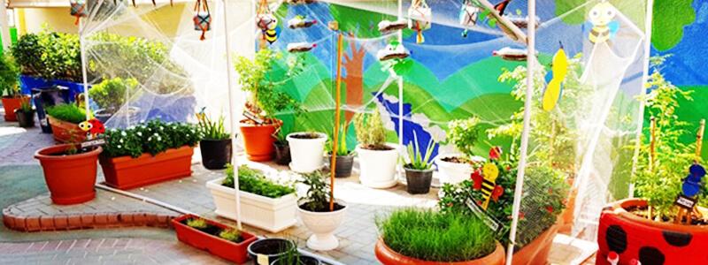 Sensory garden at nursery preschool in Dubai and Abu Dhabi - more plants